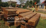 Khởi tố, bắt tạm giam 12 đối tượng về hành vi khai thác gỗ trái phép