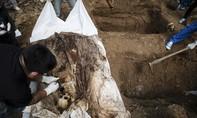 Malaysia tìm thấy 139 ngôi mộ tập thể chôn người di cư