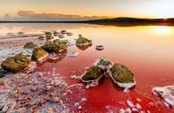 Hồ muối đỏ kỳ vĩ dọc bờ biển