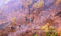 Nghi vấn đốt rừng để phá hoại, hạ uy tín cán bộ