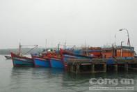 Một ngày 3 tàu cá bị cướp vượt biển động trở về