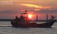 Clip: Một đêm đánh bắt cá cơm gần quần đảo Hoàng Sa