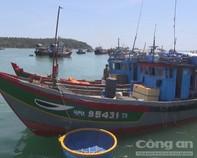 Yêu cầu Trung Quốc thả tàu cá Việt Nam vô điều kiện