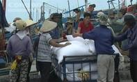 Tin ngư dân La Gi hôi của trên tàu Hải Trường 36 không chính xác