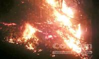Hàng trăm người thức trắng đêm dập cháy rừng