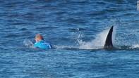 Vận động viên lướt sóng thót tim trước hàm cá mập