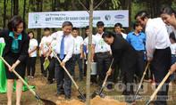 Trồng hơn 5.000 cây xanh tri ân các anh hùng liệt sỹ tại ngã ba Đồng Lộc