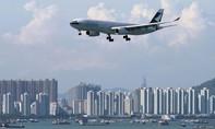 Giỏ tiền 1 triệu NZD bốc hơi tại sân bay