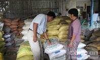 Truy tố hai đối tượng trộm thuốc bảo vệ thực vật liên tỉnh