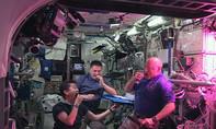 Phi hành gia ăn ngon lành xà lách tự trồng trên trạm không gian