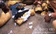 Bắt giữ xe biển số Lào chở tay gấu và rùa