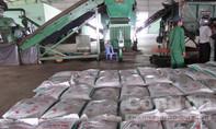 Vụ nhặt 5 lượng vàng trong rác: Nhà máy rác lên tiếng