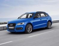 Audi SQ5 TDI Plus, công suất tăng 14 mã lực so với phiên bản giới hạn