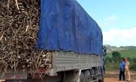 Bị kiểm tra vì xe chở quá tải, tài xế buông lời thách thức cơ quan chức năng