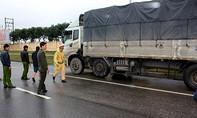 Cảnh sát giao thông bắt xe tải chở 12 tấn da, mỡ bò hôi thối