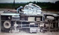 Tránh đàn bò, xe ôtô chở thức ăn gia gia súc bay xuống ruộng
