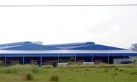 Cần Thơ: Đề nghị thu hồi 10 ha đất 'vàng' trong khu công nghiệp