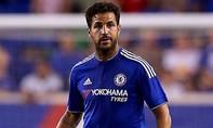 Xúc phạm Cesc Fabregas, 1 nhân viên bảo vệ của Chelsea bị đuổi việc
