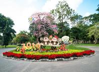 Hơn 3.000 hiện vật kỳ hoa, dị thảo tại Hội hoa Xuân TP.HCM