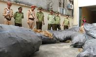 Xe tải chở 1,3 tấn bì lợn thối vào Nam tiêu thụ