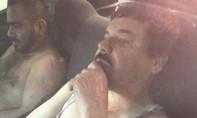 Tên trùm ma túy Mexico bị bắt trở lại sau nửa năm đào tẩu