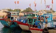 455 tàu cá ngư dân Quảng Ngãi vẫn còn ở ngoài biển
