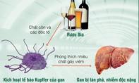 Bảo vệ gan trước 'bảng vàng' bia rượu