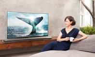 Các mẫu TV Samsung được vinh danh tại Châu Âu và Mỹ