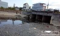 Cá chết hàng loạt tại kênh Đa Cô do thiếu ô xi vì ô nhiễm môi trường nước