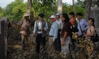 Động thổ thăm dò dấu vết lăng mộ vua Quang Trung
