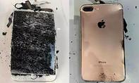 iPhone 7 Plus bất ngờ phát nổ khi rơi xuống sàn