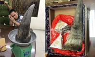 Phát hiện sừng tê giác 'khủng' ở sân bay Tân Sơn Nhất