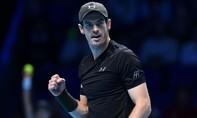 Murray đấu Djokovic ở chung kết ATP Finals 2016