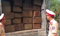 CSGT Thừa Thiên – Huế liên tục bắt gỗ lậu