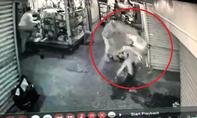 Nam thanh niên bị đâm tới tấp trong chợ ở Sài Gòn