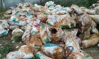 Chôn lấp rác thải nguy hại, một công ty bị xử phạt gần 1 tỷ đồng