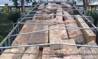 CSGT lại bắt số lượng lớn gỗ lậu