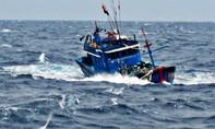 Ba ngư dân rơi xuống biển mất tích