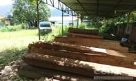 Sai phạm ở rừng phòng hộ La Ngà: Nhiều khuất tất cần làm rõ