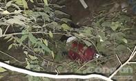 Tài xế ô tô đào tẩu bất thành sau khi tông nam sinh viên rơi xuống cầu tử vong