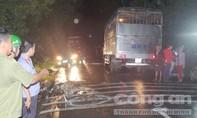 Chạy tránh mưa, va chạm xe tải hai thanh niên tử vong