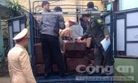 CSGT tiếp tục bắt xe tải vận chuyển 2,75m3 gỗ lậu