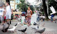 'Bảo kê' cả chim trời giữa lòng Sài Gòn