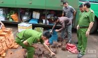 Xử lý 1 xe khách chở thú rừng và sản phẩm gỗ trái phép