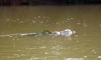 Lừa chủ nợ đi thuyền ra giữa sông rồi giết, vứt xác phi tang