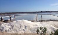 Muối vừa mất mùa vừa rớt giá thê thảm, diêm dân mất Tết