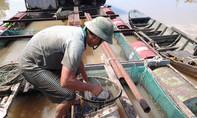 Nhọc nhằn mùa cào trùn chỉ trên sông Đồng Nai