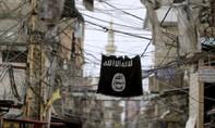 20 quốc gia  cung cấp bom cho IS