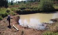Vụ cô gái chết dưới trũng nước: Hung thủ là người tình nạn nhân