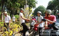 Người dân TP.HCM đổ xô đi mua hoa giảm giá